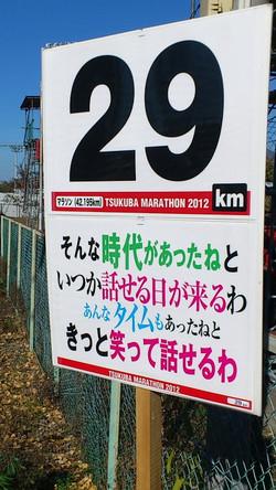 Tsukuba_29kiro